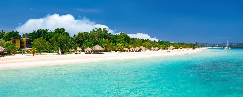 The Breathtaking Beauty Of Tropics