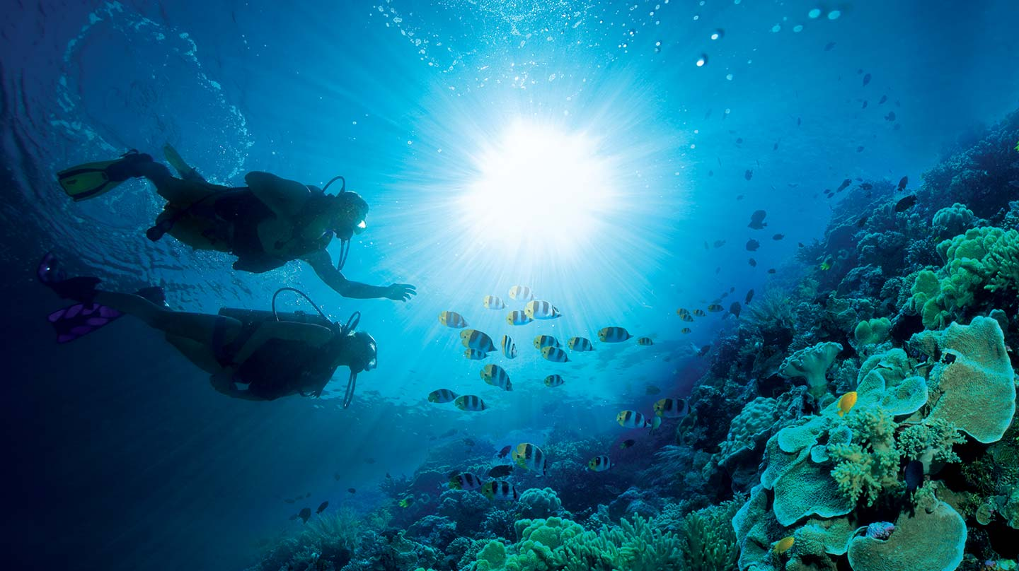 Caribbean Diving: All Inclusive Scuba Diving Vacations In The Caribbean