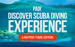 PADI<sup>®</sup> Discover Scuba Diving Experience