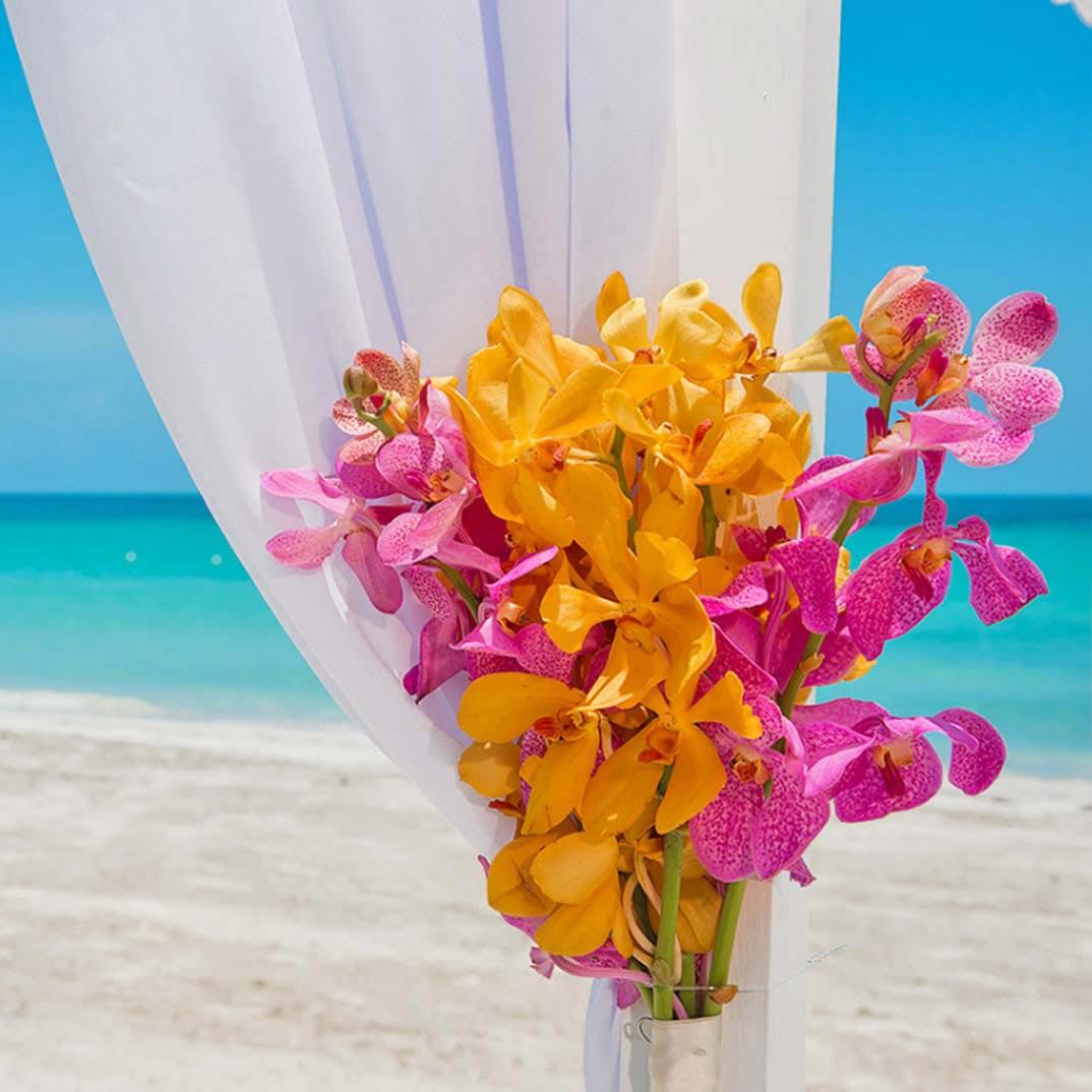 465bdff3c0b Get a Free Caribbean Wedding with a 3-Night Stay Beaches