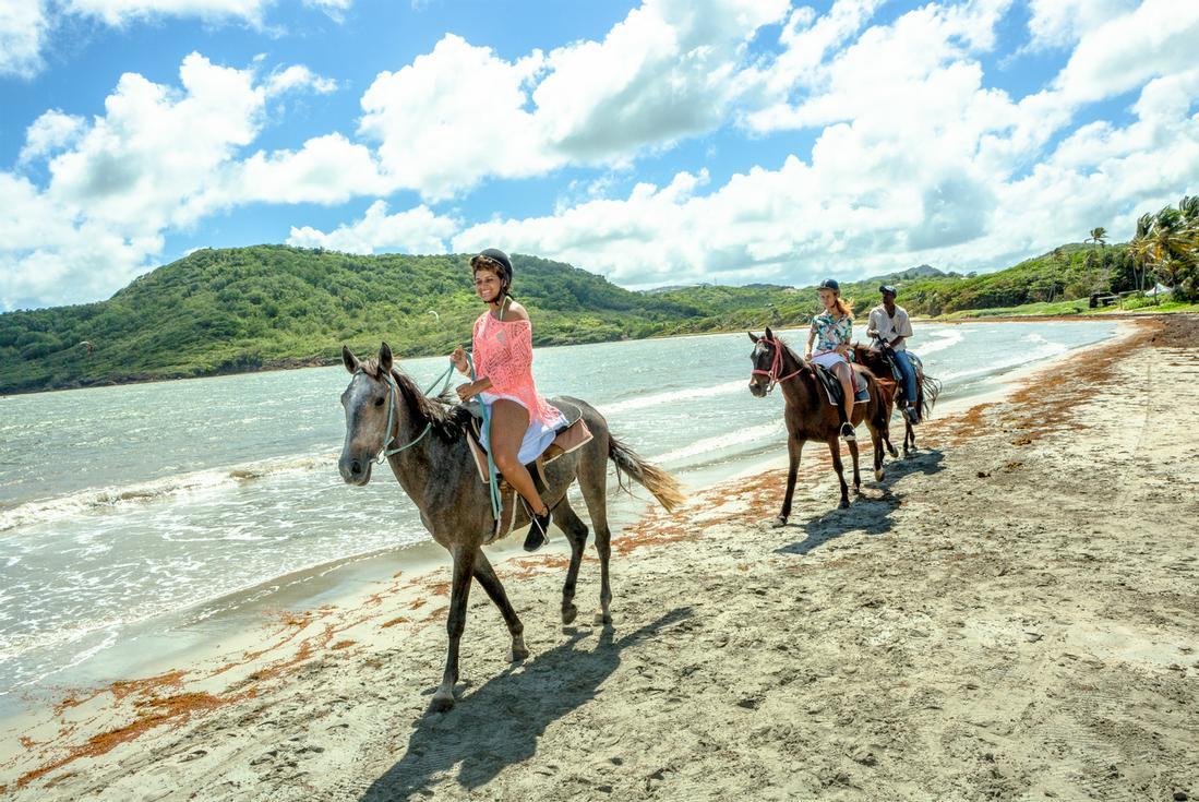 St Lucia Horseback Riding - Island Routes