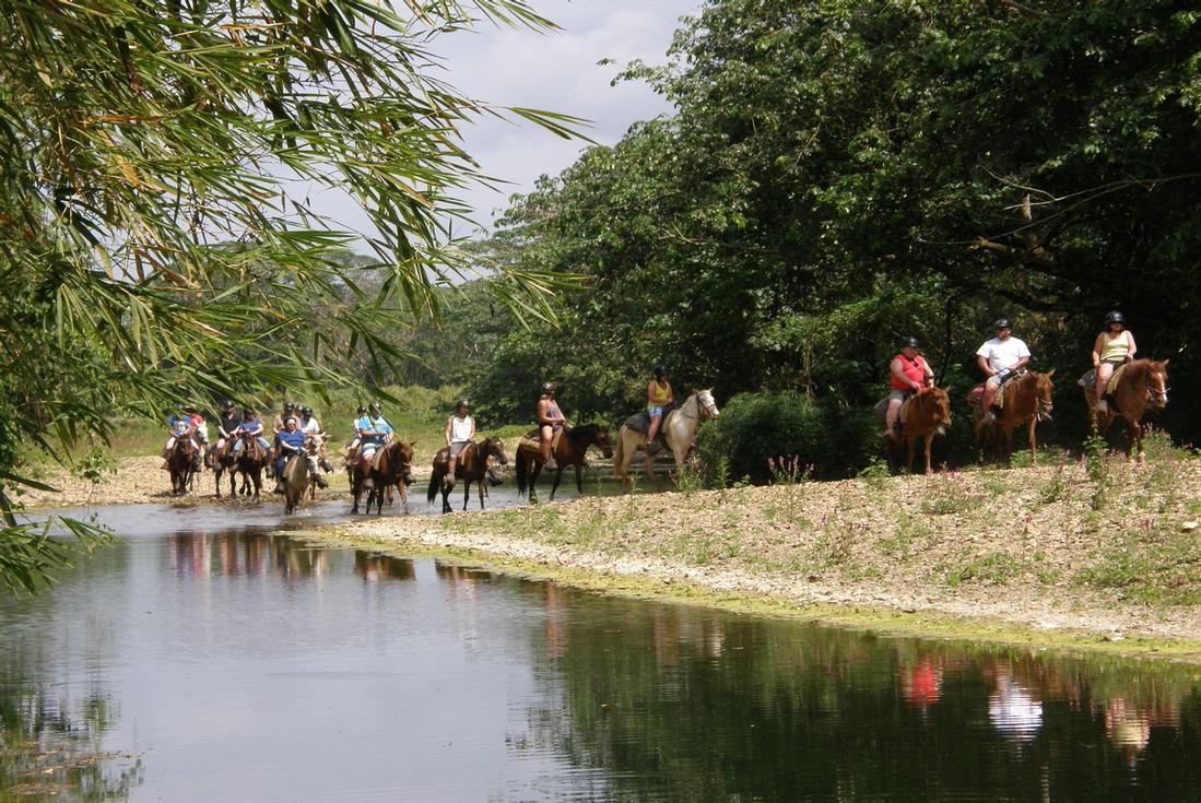 horseback riding in punta cana