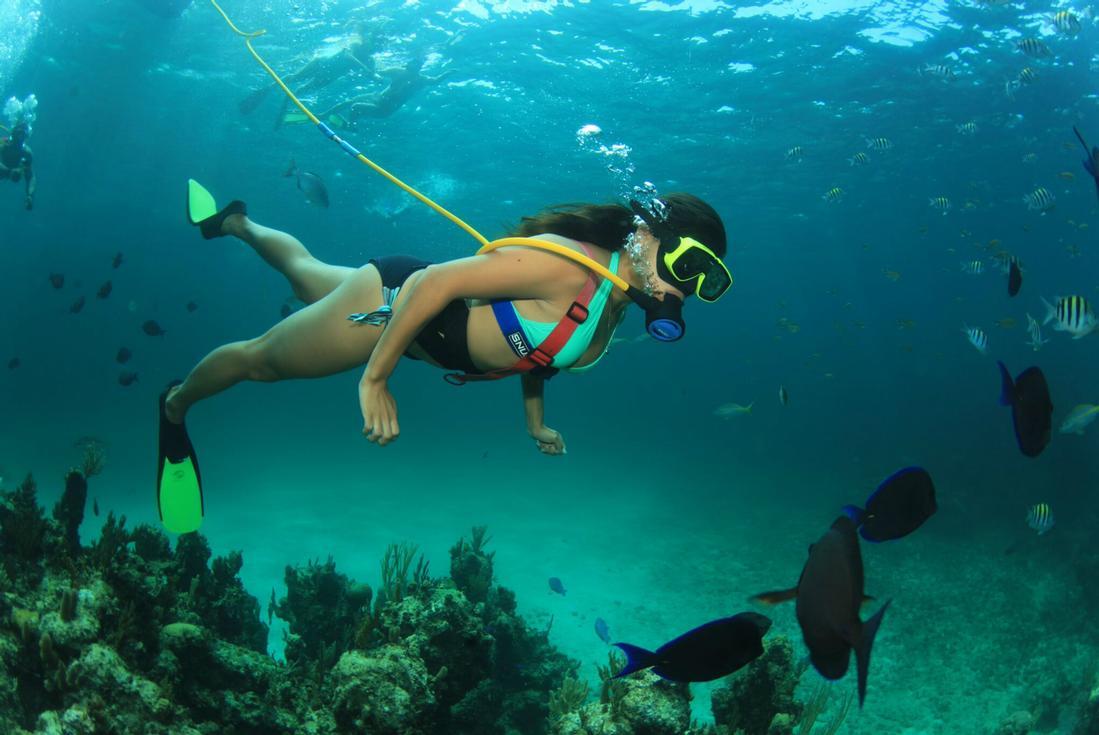Explore The Beauty Of Caribbean: Snuba Bahamas From Nassau