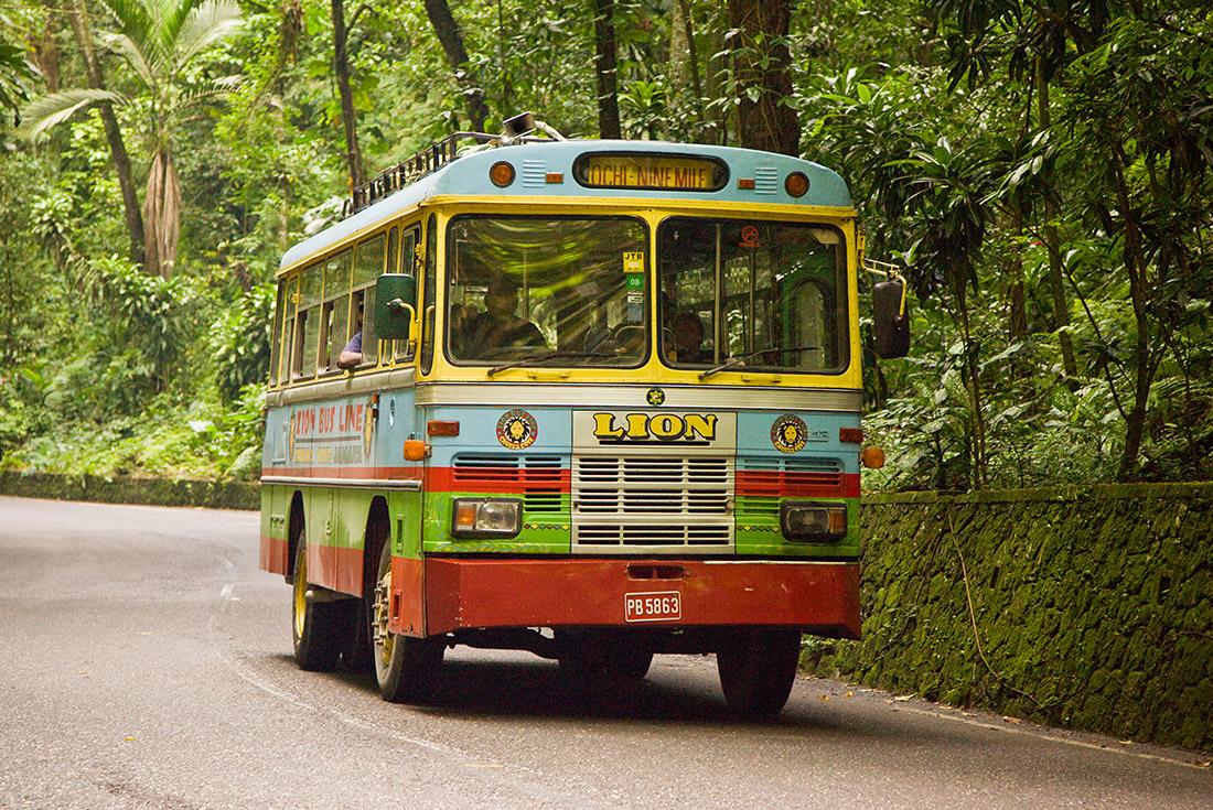 Zion Bus Tour Ocho Rios Jamaica