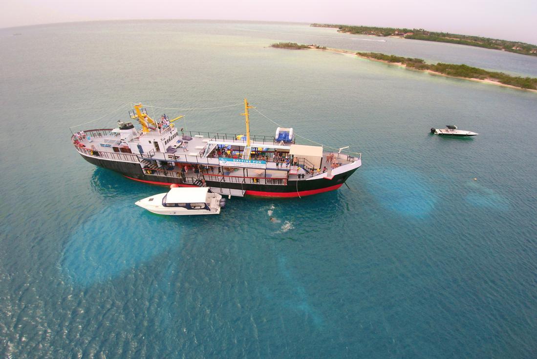 D-boat Antigua