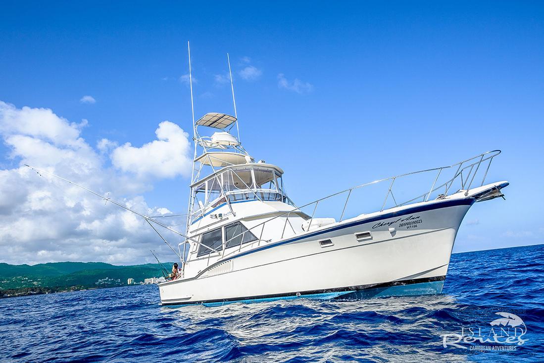 deep sea sport fishing st. lucia