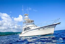 deep sea sport fishing st. lucia