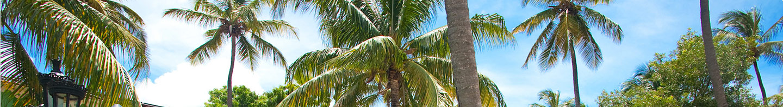 The Caribbean Beachfront Village At Sandals Grande Antigua