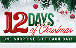 12 Days of Christmas One Surprise Gift Each