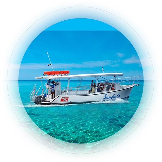 New Sandals Fleet Dive Boats Glass Bottom Boats Sandals
