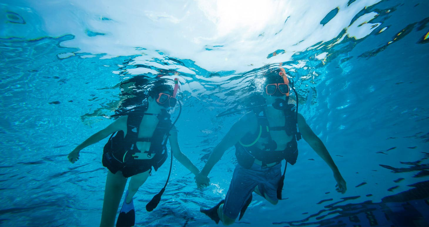 Scuba diving trips in the caribbean sandals - Dive in scuba ...