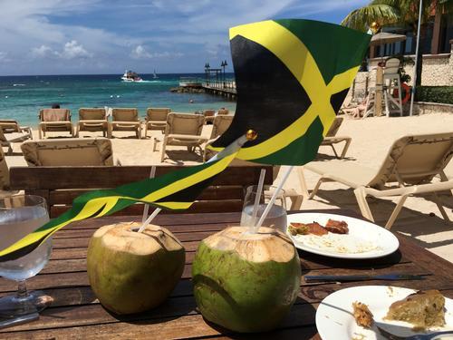 Site de rencontre coconut voyage rencontre rencontre gratuit pour